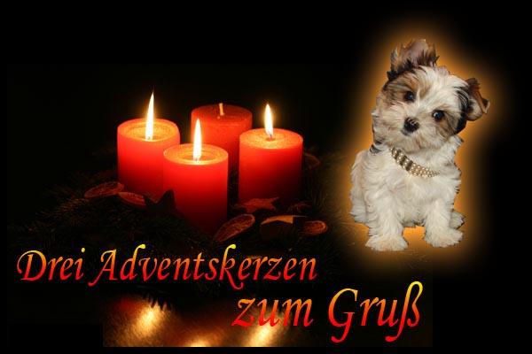 An den Beitrag angehängtes Bild: http://www.vom-suedsee-paradies.de/3advent.jpg