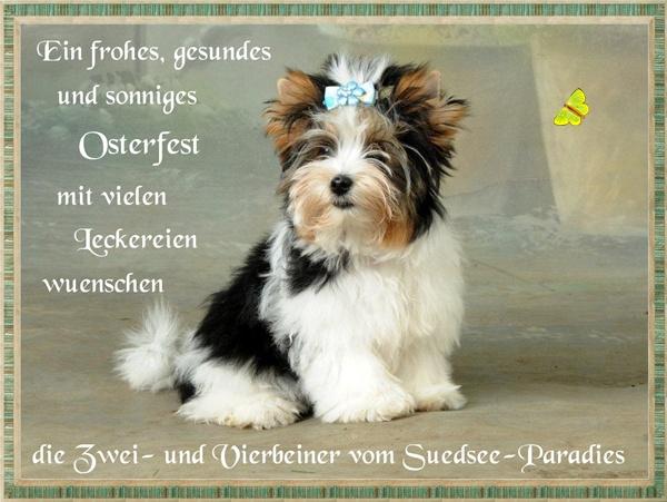 An den Beitrag angehängtes Bild: http://www.vom-suedsee-paradies.de/Ostern2011.jpg