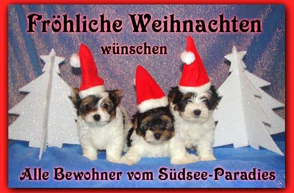An den Beitrag angehängtes Bild: http://www.vom-suedsee-paradies.de/w2010.jpg